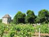 G324 Propriétés viticoles St. Quentin de Caplong
